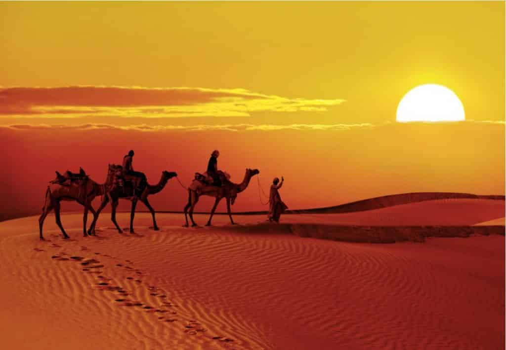 Reasons to Visit Jaisalmer-Golden City