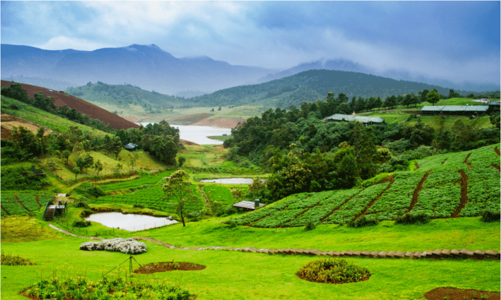 Ooty- Nature's Incredible Wonder- honeymoon destinations in India and one of the most beautiful places in India