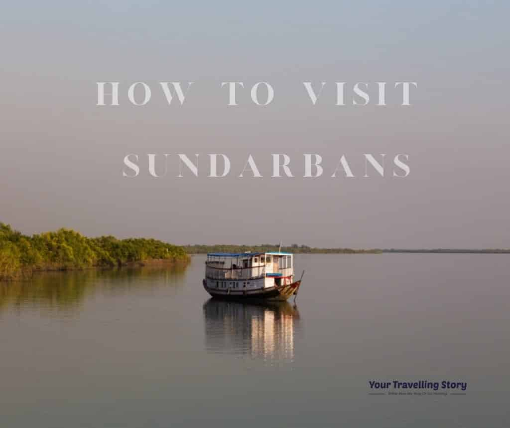 How to Visit Sundarbans