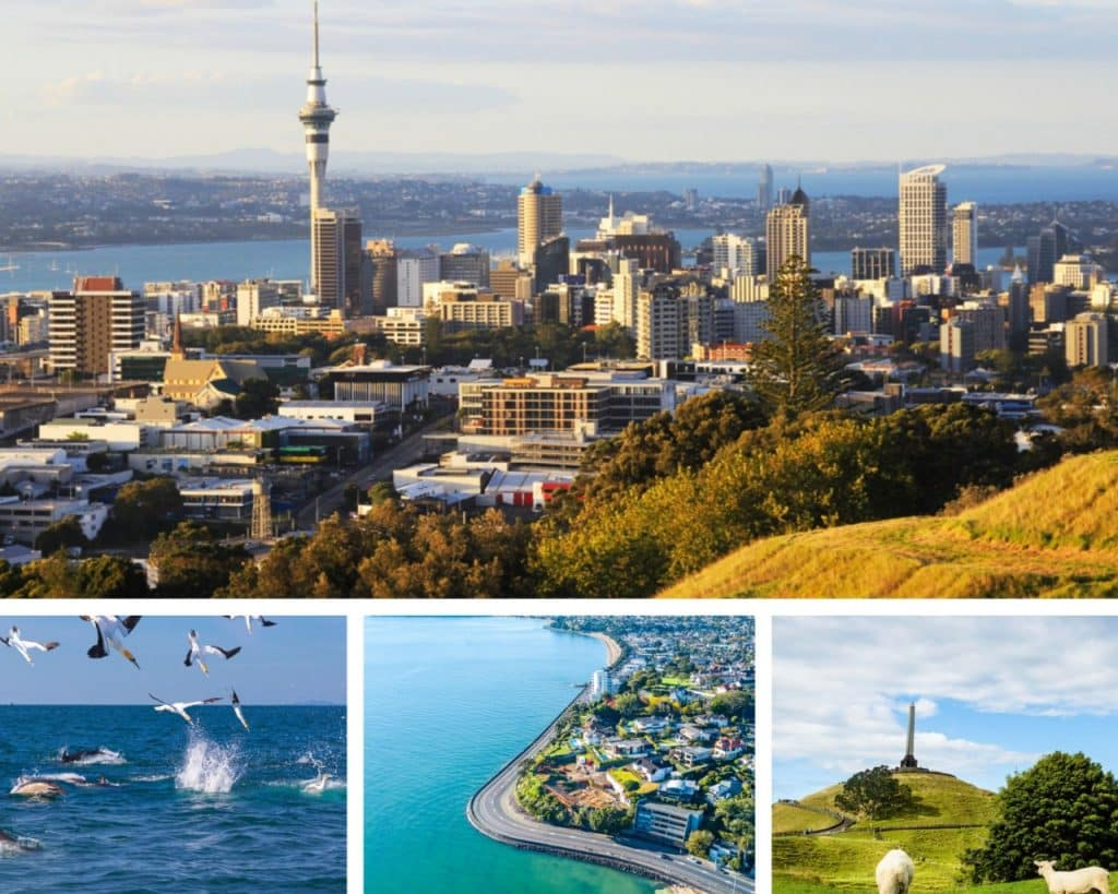 Best Places to Visit in Auckland, New-Zealand Tourism